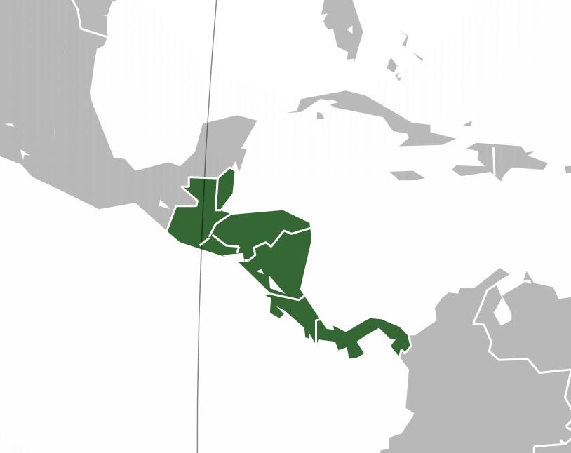 Diccionario de palabras empleadas en América Central en general.