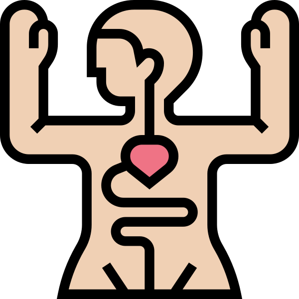 Diccionario o categoría sobre: Anatomía descriptiva, anatomía topográfica, anatomía clínica, anatomía comparada, anatomía microscópica, anatomía macroscópica, anatomía del desarrollo, anatomía funcional, anatomía de superficie, anatomía de las mediciones, anatomía radiológica, anatomía patológica, anatomía artística, anatomía Humana.