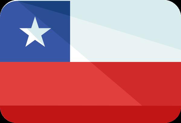 Diccionario de palabras empleadas en Chile.