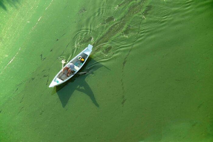 Navegaba plácidamente en el río