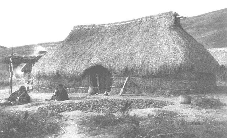 Ruca: Choza de los indios, y por ext. cualquier cabaña o covacha.