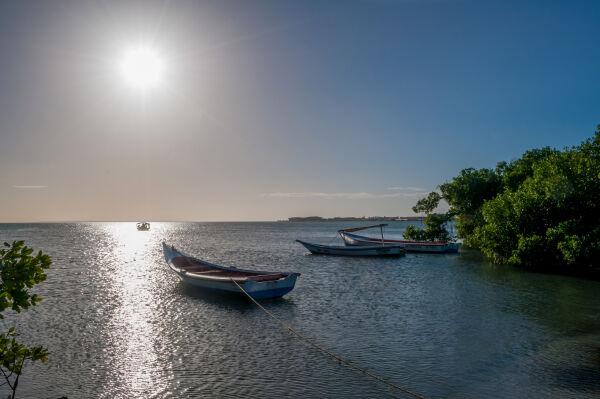 El brillo del sol se refleja sobre el río
