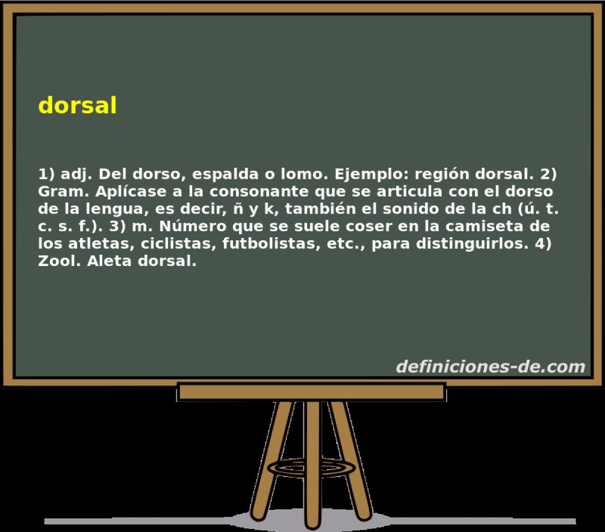 Qué significa Dorsal?