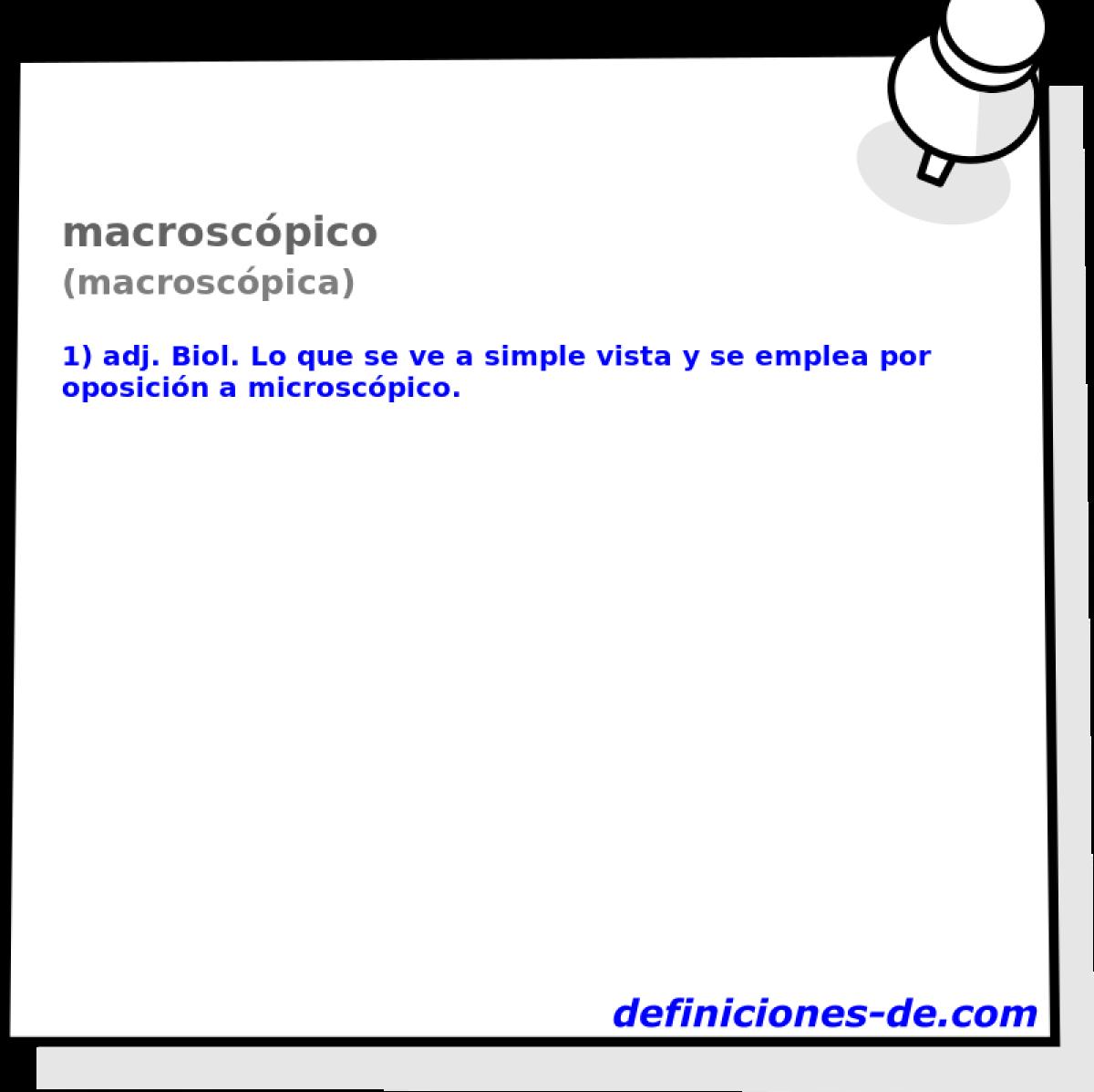 Qué significa Macroscópico (macroscópica)?