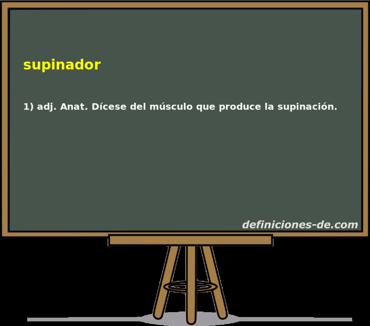 Qué significa Supinador?