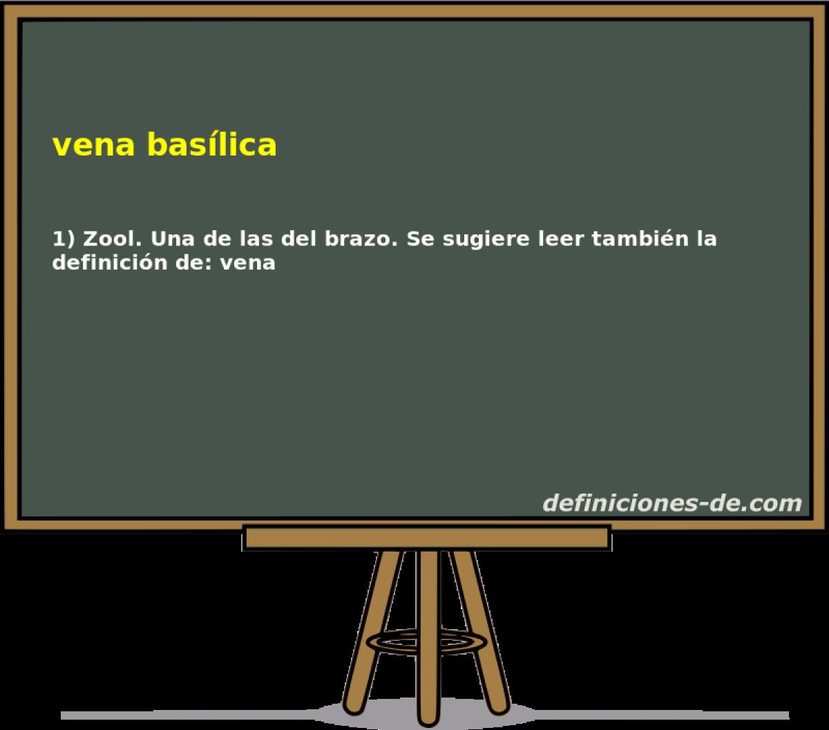Qué significa Vena basílica?