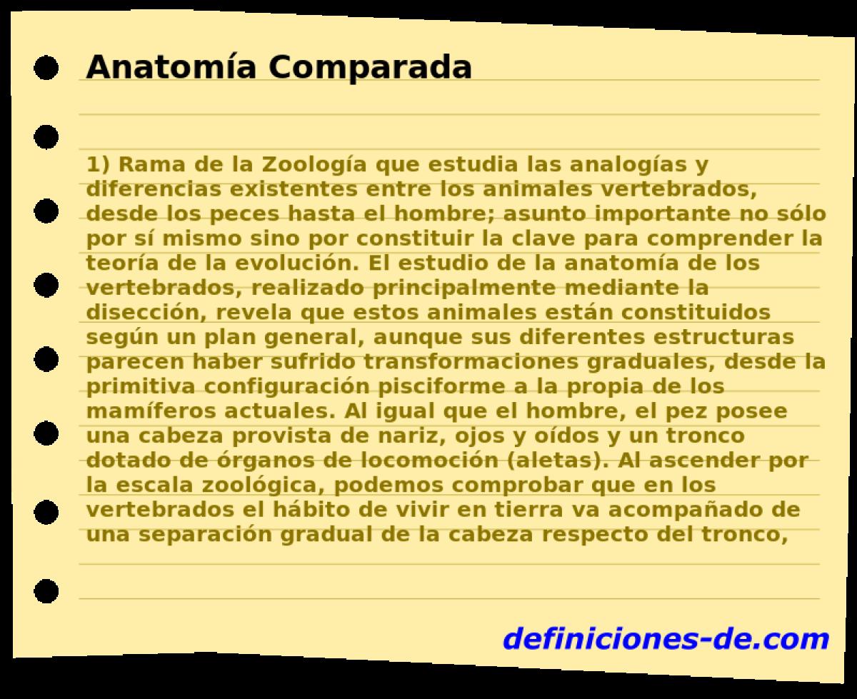 Qué significa Anatomía Comparada?