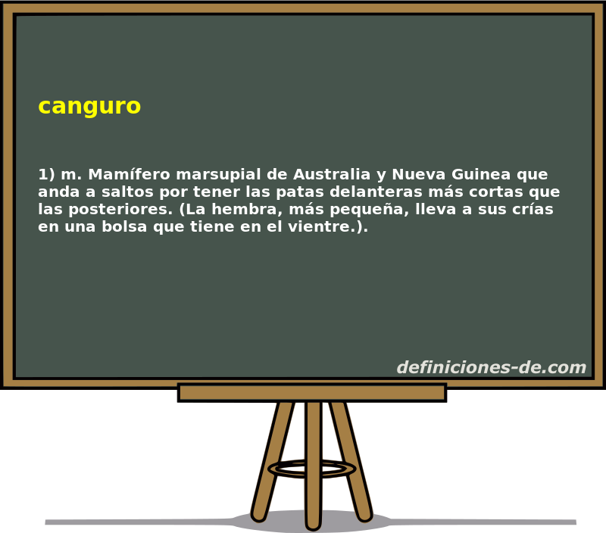 Moderno Canguro De La Anatomía Genital Fotos - Imágenes de Anatomía ...